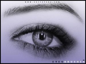 EyeBrushes01-63881211