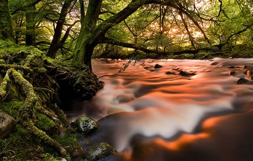 River-Radiant-An-alternative-101560025