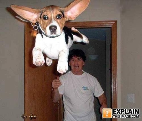 Unxplained-photo-1236062229-95297